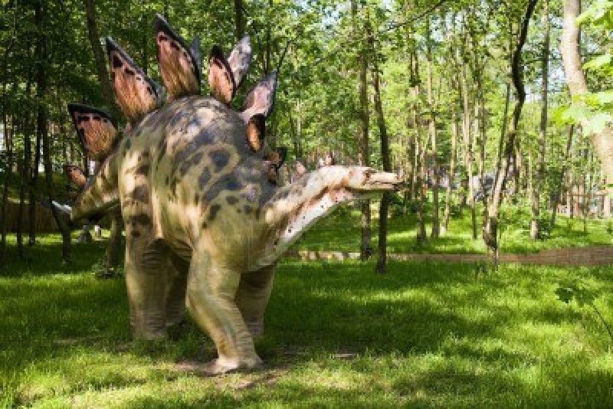 991316-jurrasic-park--set-of-dinosaurs--stegosaurus-armatus