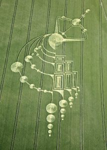 Crop Circle representing The Greys 5 Hybrid Races including Bashars